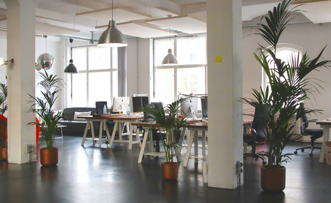 Biophilic Office Design Makes You Happier And More Productive We